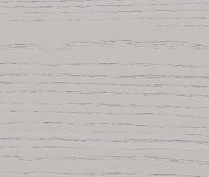 RC21 – Nebbia